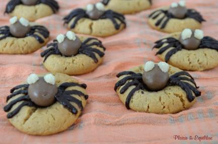 cookies_araignees