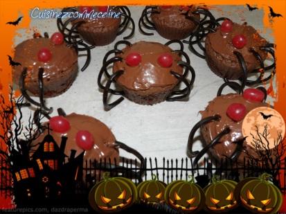 cupcakes-araignees4